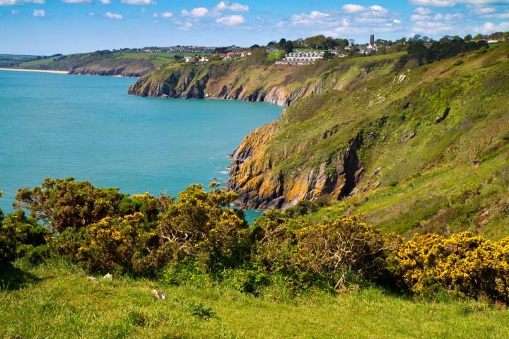 Devon Coastline (Small).JPG