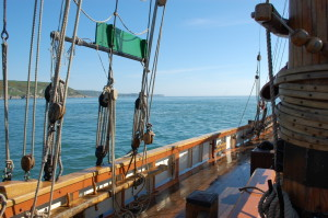 cruising along the south Devon coast