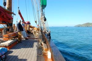 Brixham Boat Trip Classic Summer Sailing