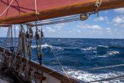 Pilgrim of Brixham Sailing Holidays and Short Breaks