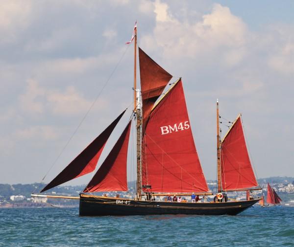 Brixham boat trip