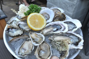 oyster-festival-speciality