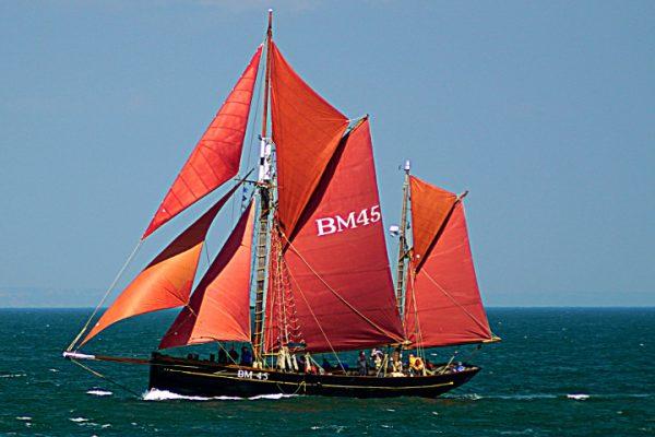 Boat Trip Half Day Sail