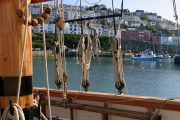 Brixham through rigging half-day sail